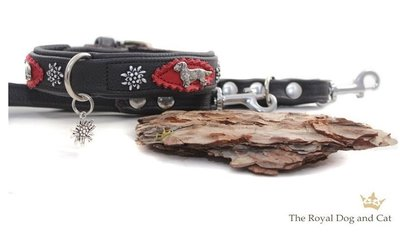 Ruwharige Teckel halsband brown/red