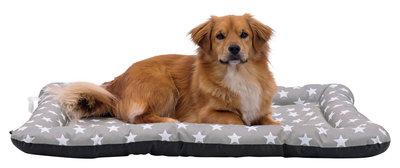 Stars hondenkussen