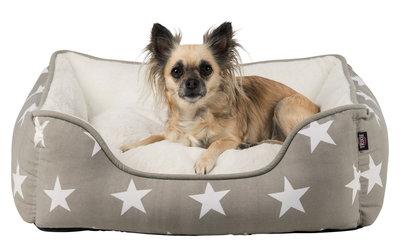 Stars Hondenmand